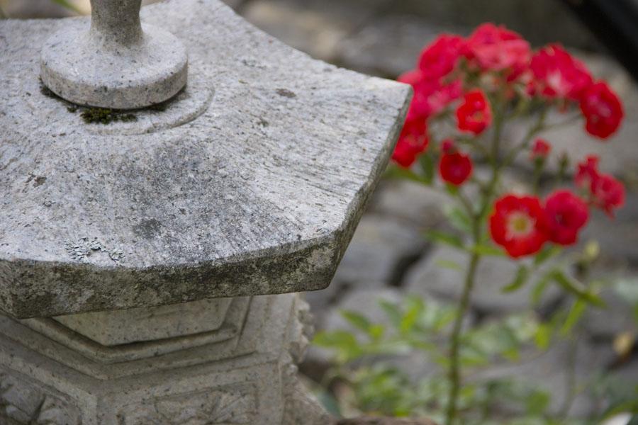 Garten_Blume_China_Deko_Ferienwohnungen_Mertz